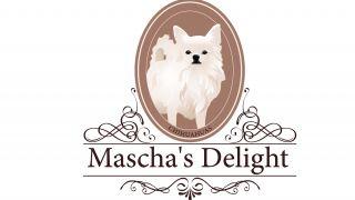 Impression Mascha's Delight Chihuahuas