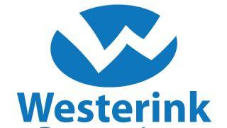 Impression Westerink Bestrating